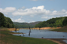 Periyar City Descriptions